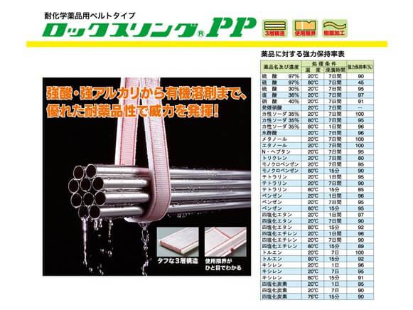 pp-slide-img02